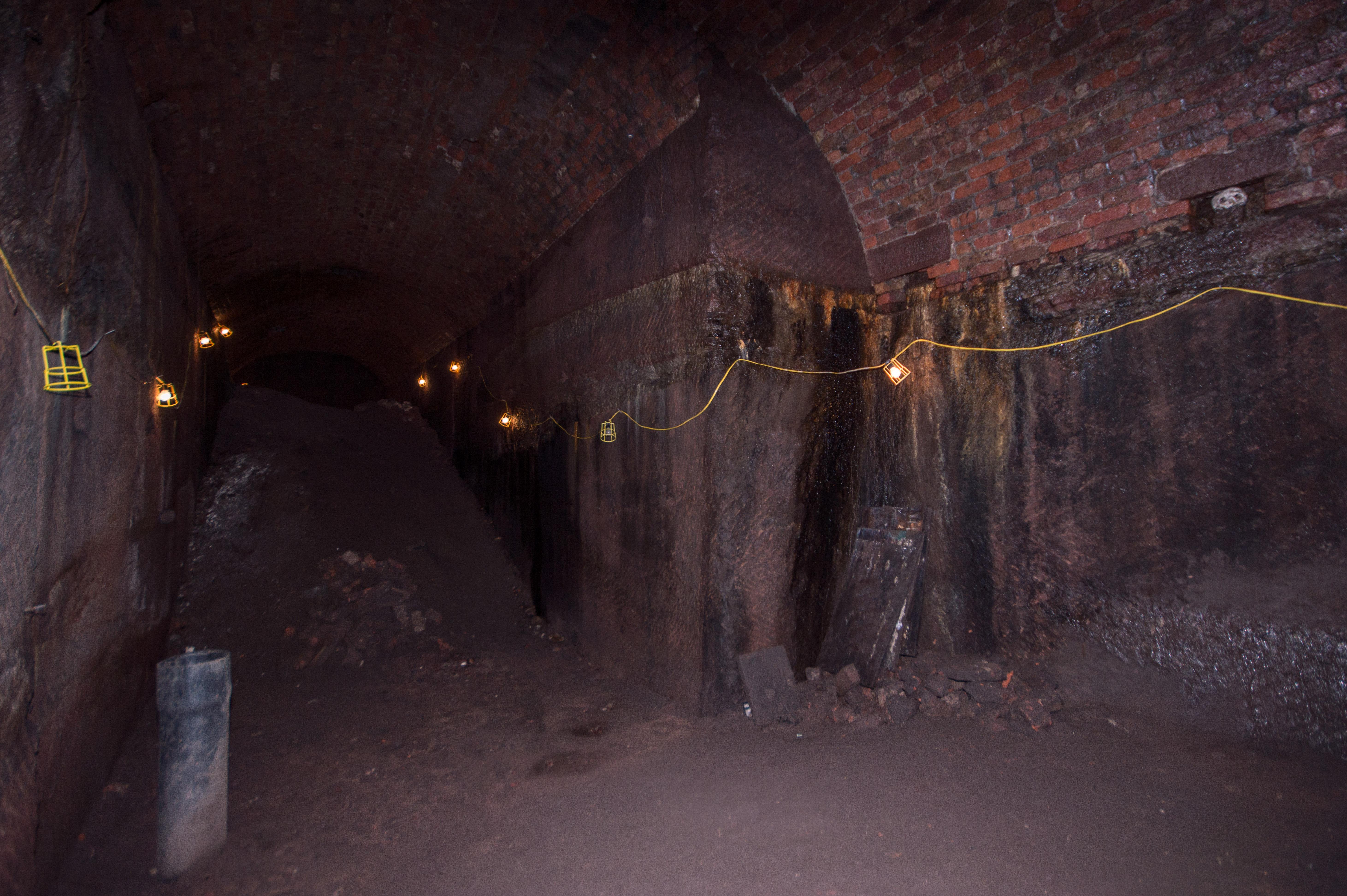 Williamsons tunnel III (Group visit)